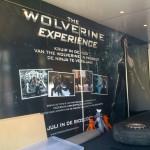 Wolverine (1)-Resized