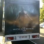 Wolverine (3)-Resized